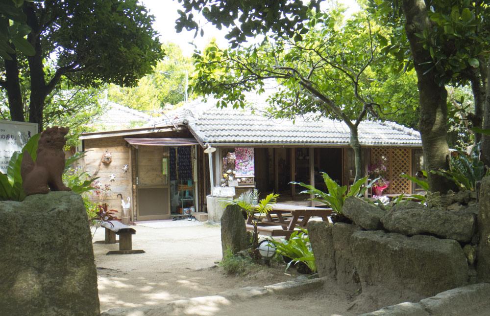 フクギ並木のカフェ