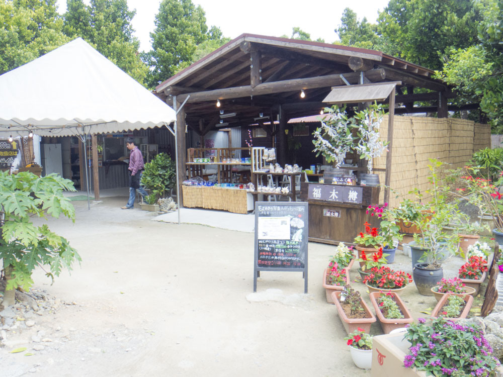 フクギ並木通り内のカフェ