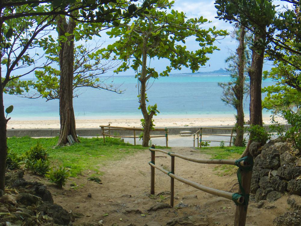 フクギ並木の先にある海