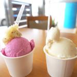 うるまジェラート – アイスで沖縄を味わう。