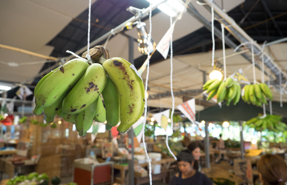 バナナが吊るされている