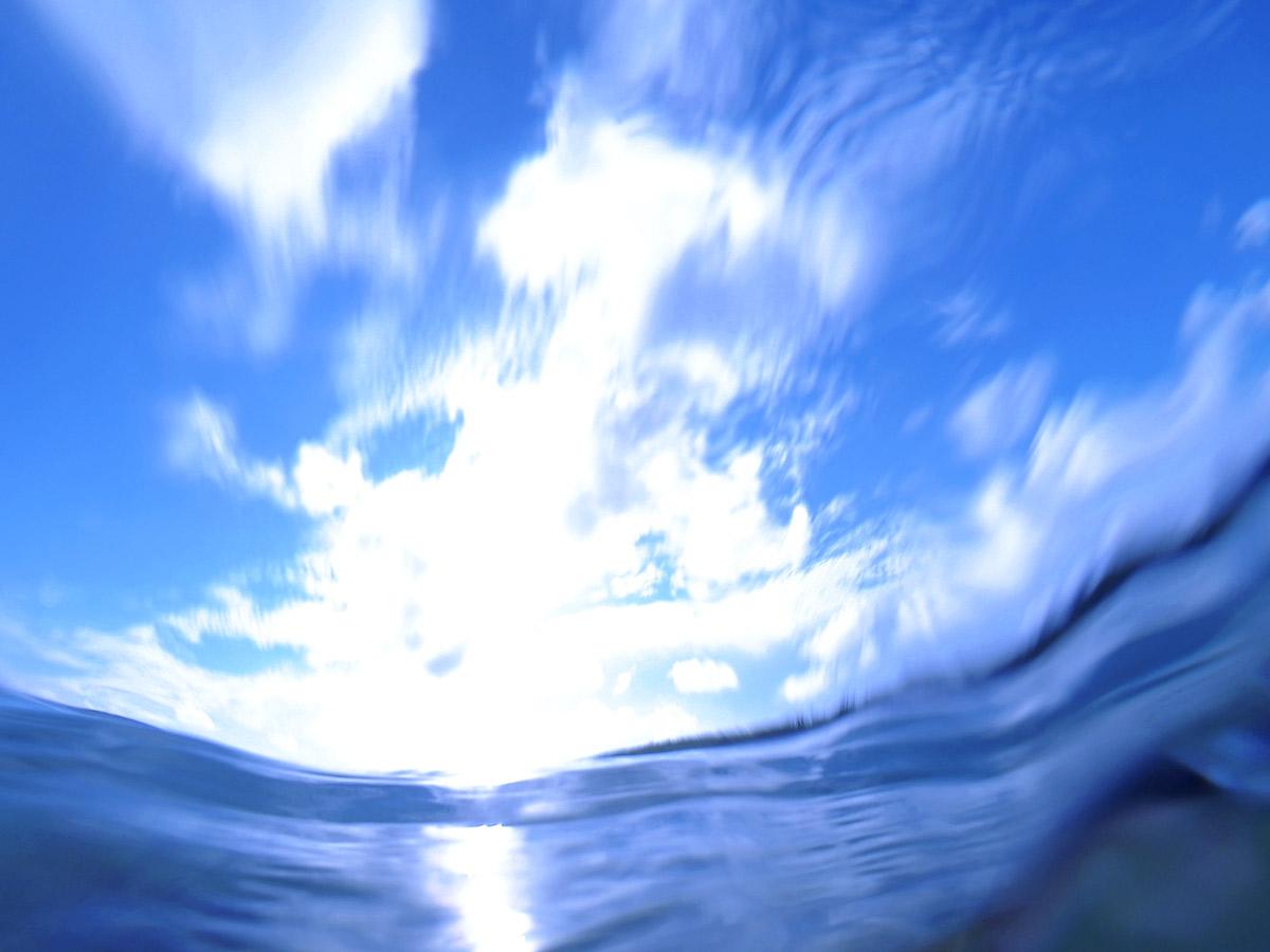 おもしろ海写真