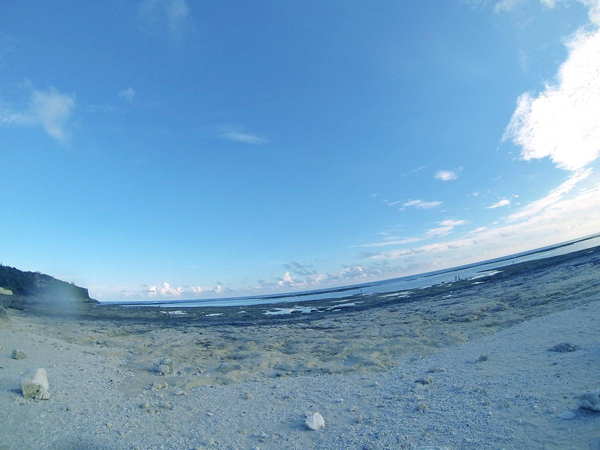 ピノ子さんはいきなり海岸で貝殻拾い