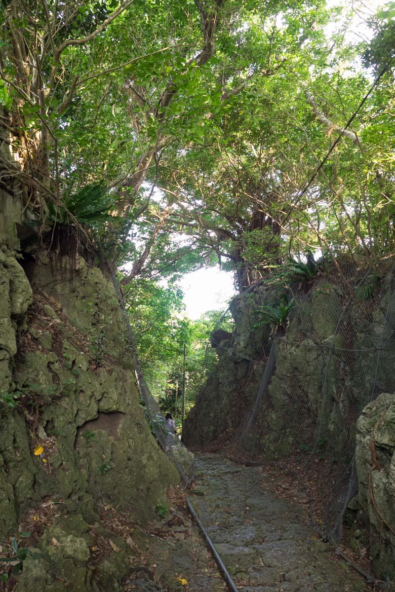垣花樋川へは急な坂を下っていく