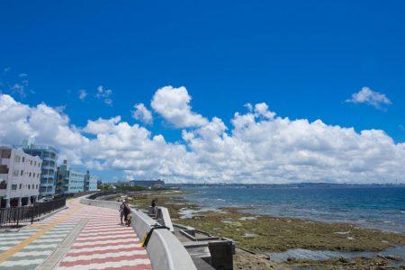 晴れた日の宮城海岸