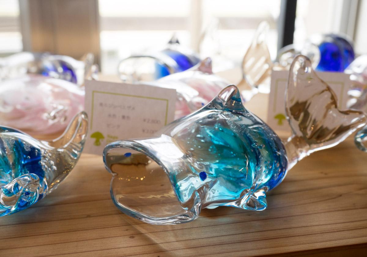 ジンベイザメのガラス