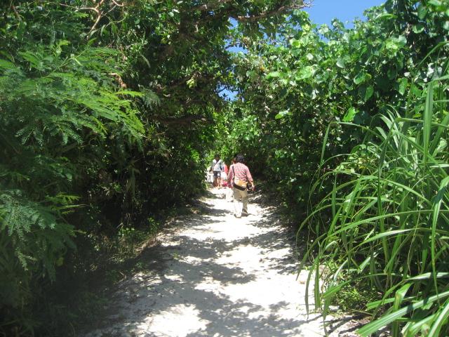 砂山ビーチまでの道