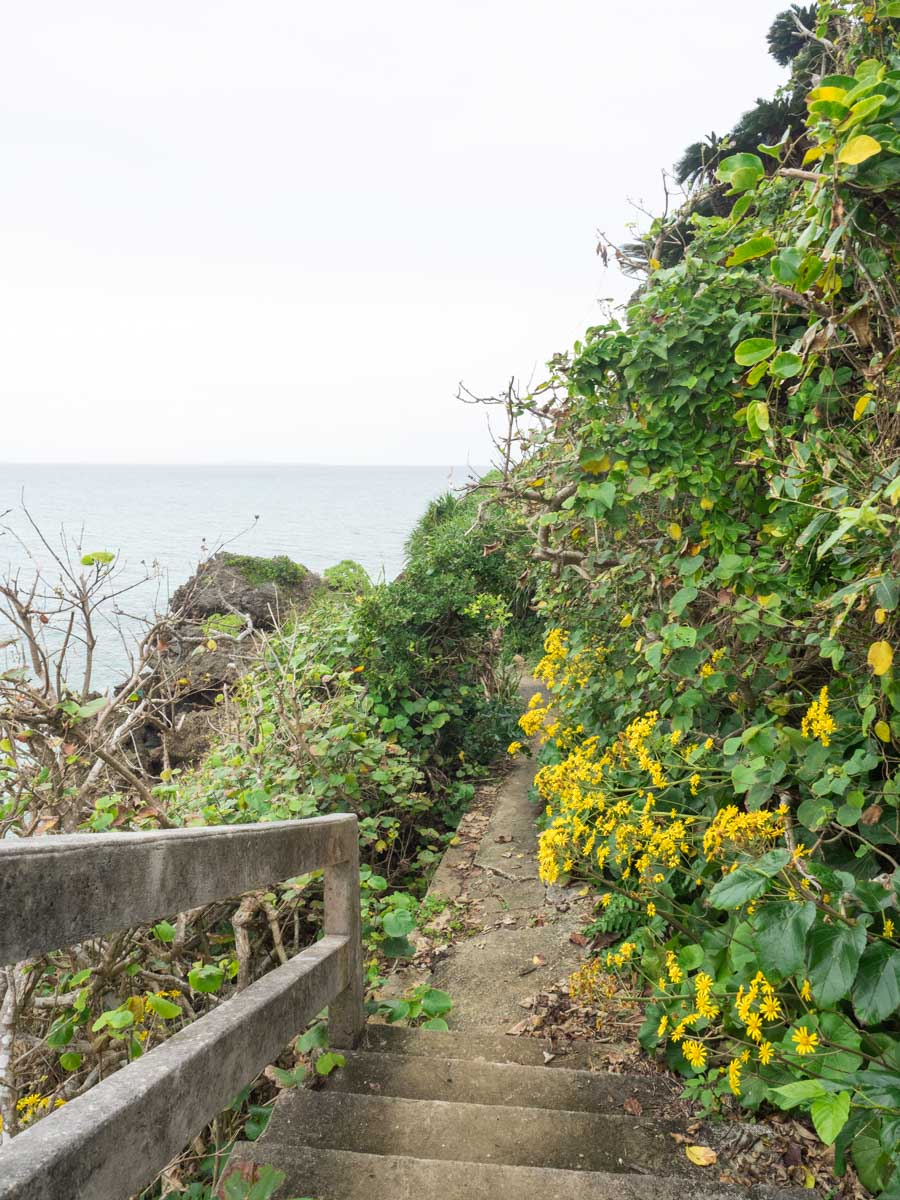 階段に黄色い花