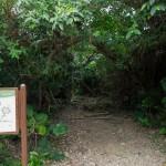 沖縄最高の霊地「フボーウタキ」は、一般人立ち入り禁止の聖域