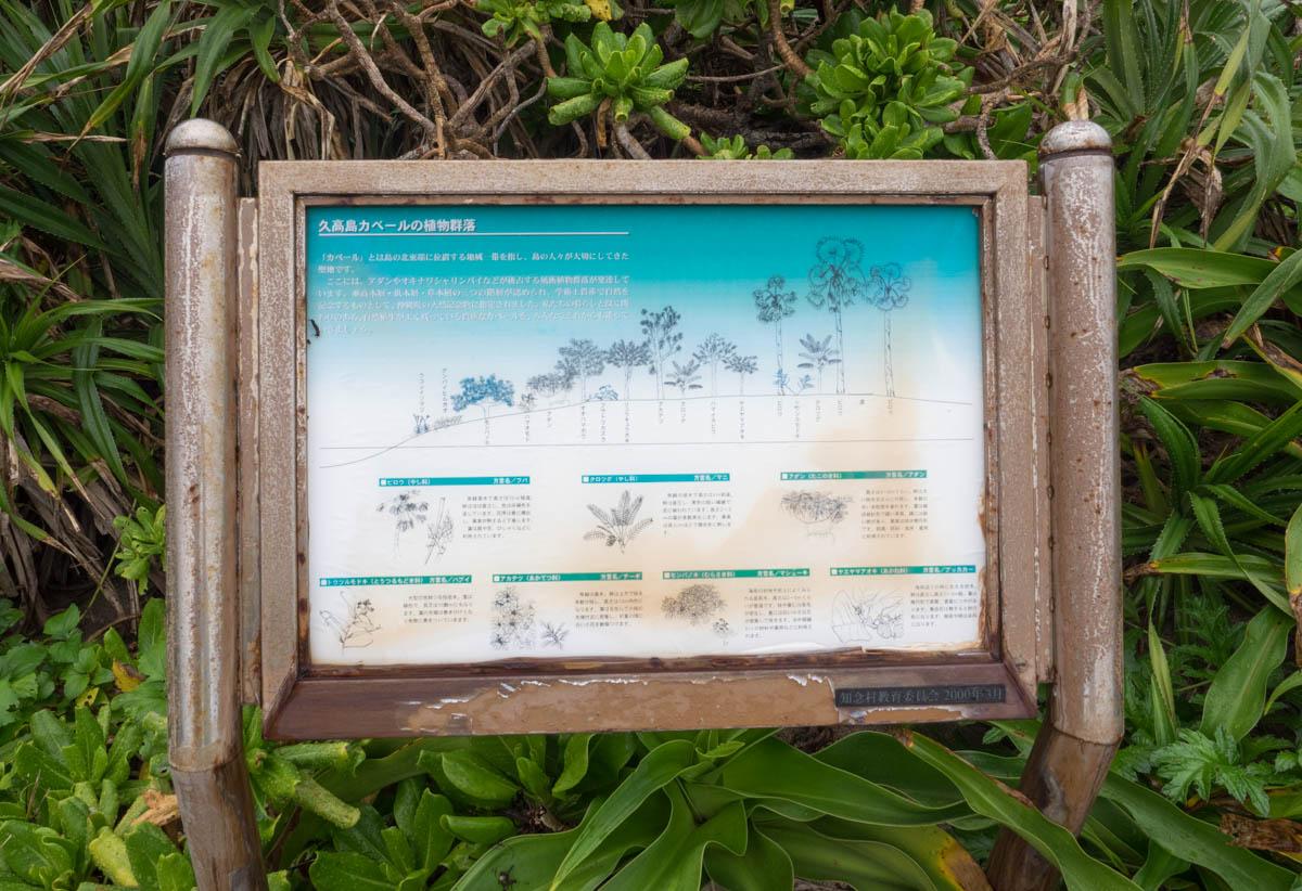植物の説明看板