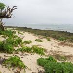 久高島にある星砂の浜「ウパーマ」