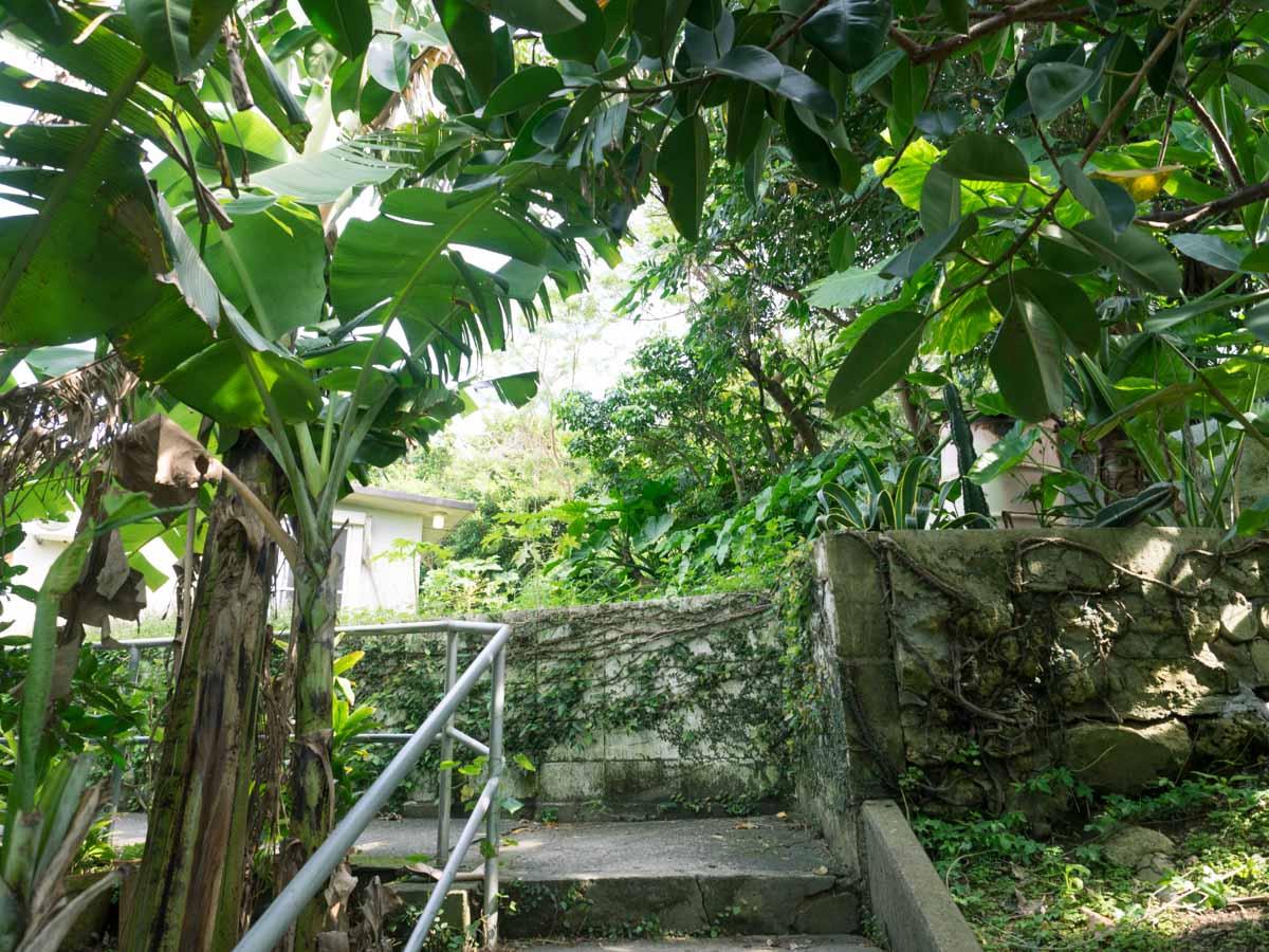 緑の入り口