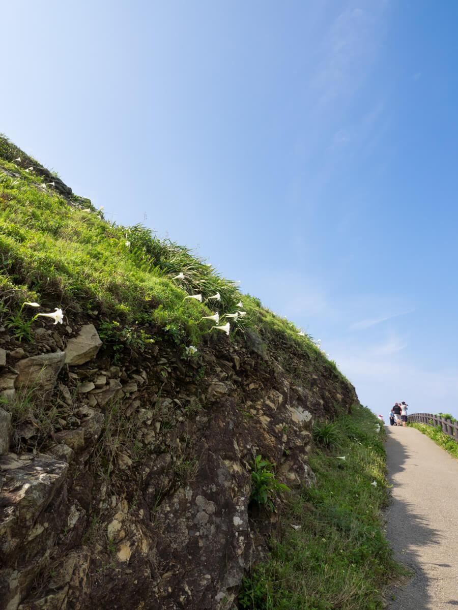 平久保崎の坂を登る