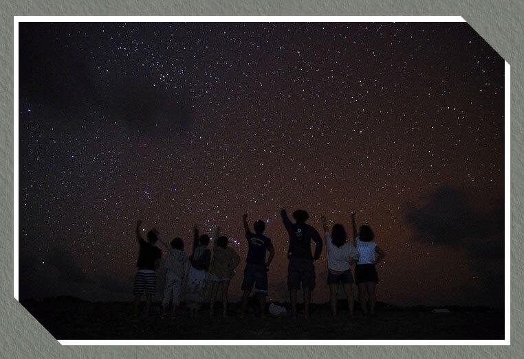 美波の南十字星ツアー