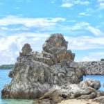 サンゴ礁の宝庫。沖縄本島随一のシュノーケリングスポット「ゴリラチョップ」