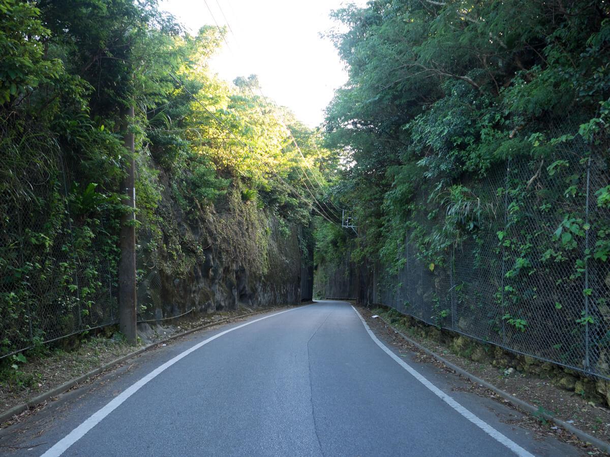 ワイトゥイの道路