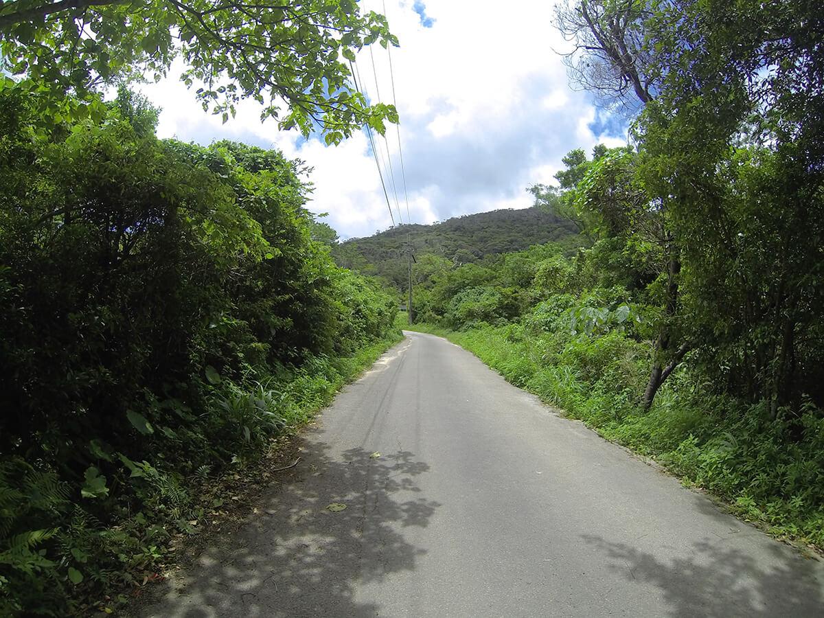 ター滝までの道のり