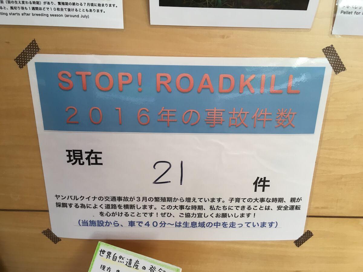 STOP ROADKILL