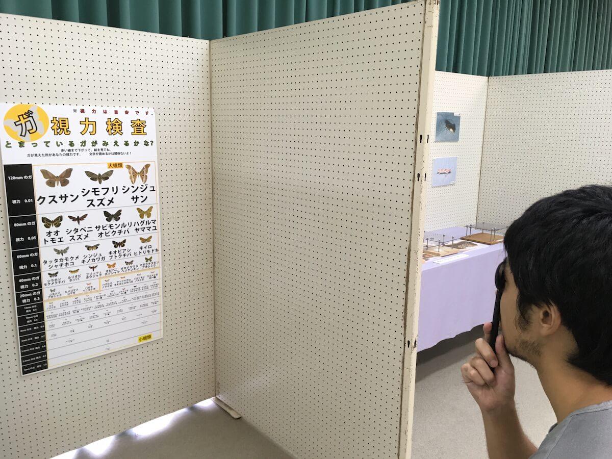 小蛾で視力検査