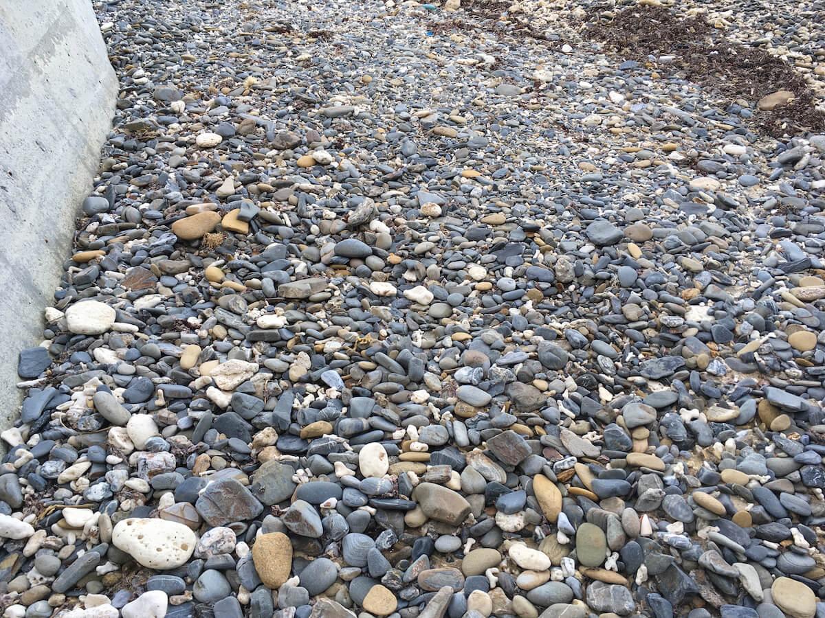 海岸は丸石が多い