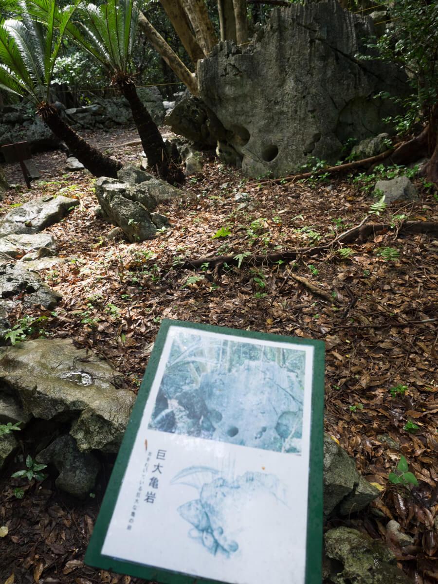 大石林山の岩