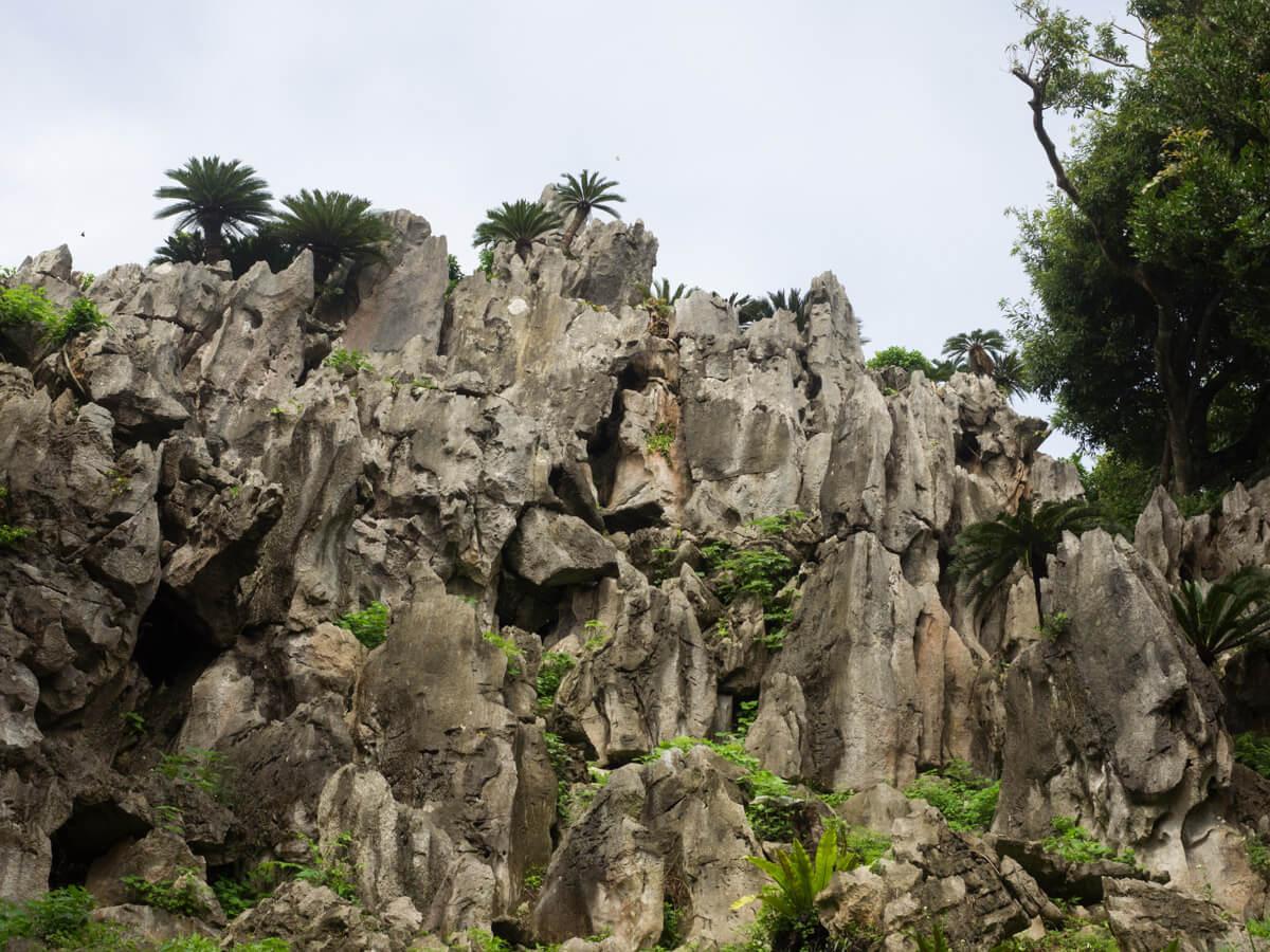 大石林山の観光スポット