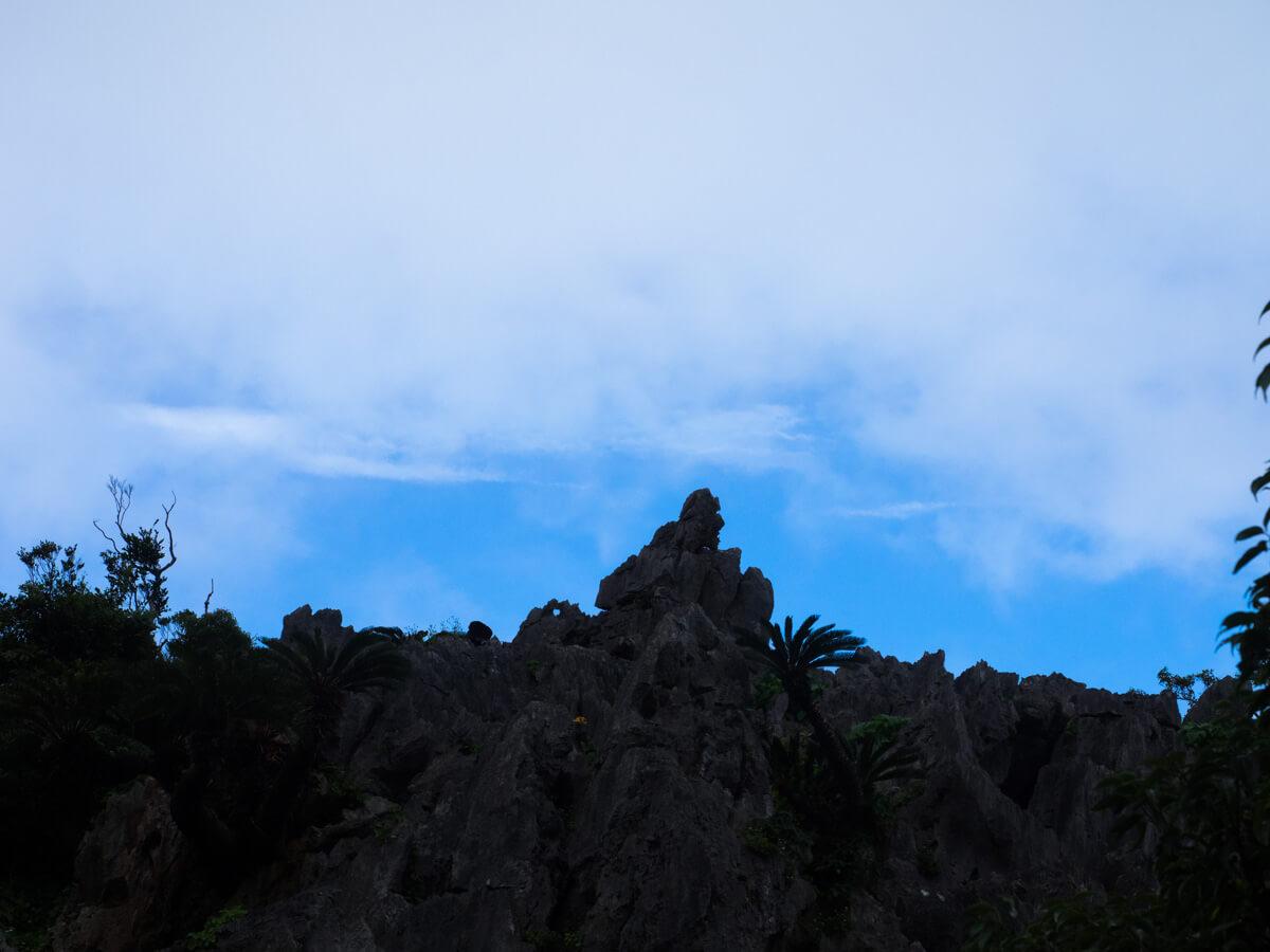 ライオンキングの岩
