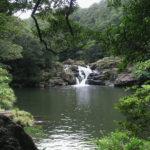 「タナガーグムイの滝」でやんばるのマイナスイオンをたっぷりと浴びる